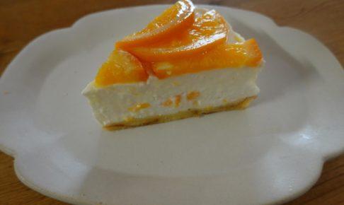 オレンジヨーグルトムースケーキ
